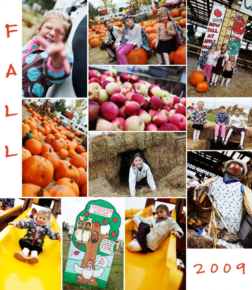 2009 fall collage